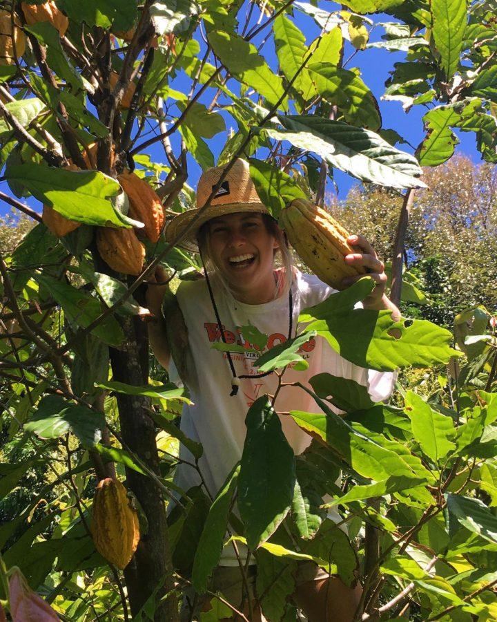 Mia Bostic harvests fruit at ONO Organic Farms in Maui, Hawaii.  Photo courtesy of Mia Bostic.