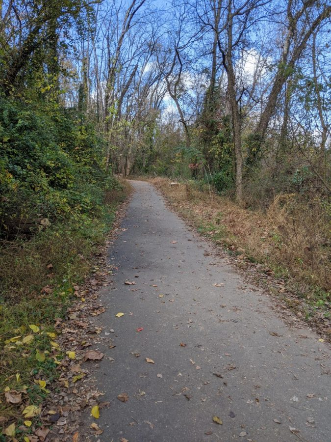 Best Running Spots in Cville