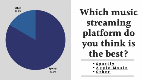 A graphical representation of the results from a recent survey which asked C.H.S students which music streaming platform they believed was best.